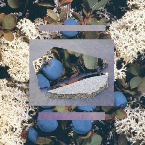 Various artists - La forêt sans nom
